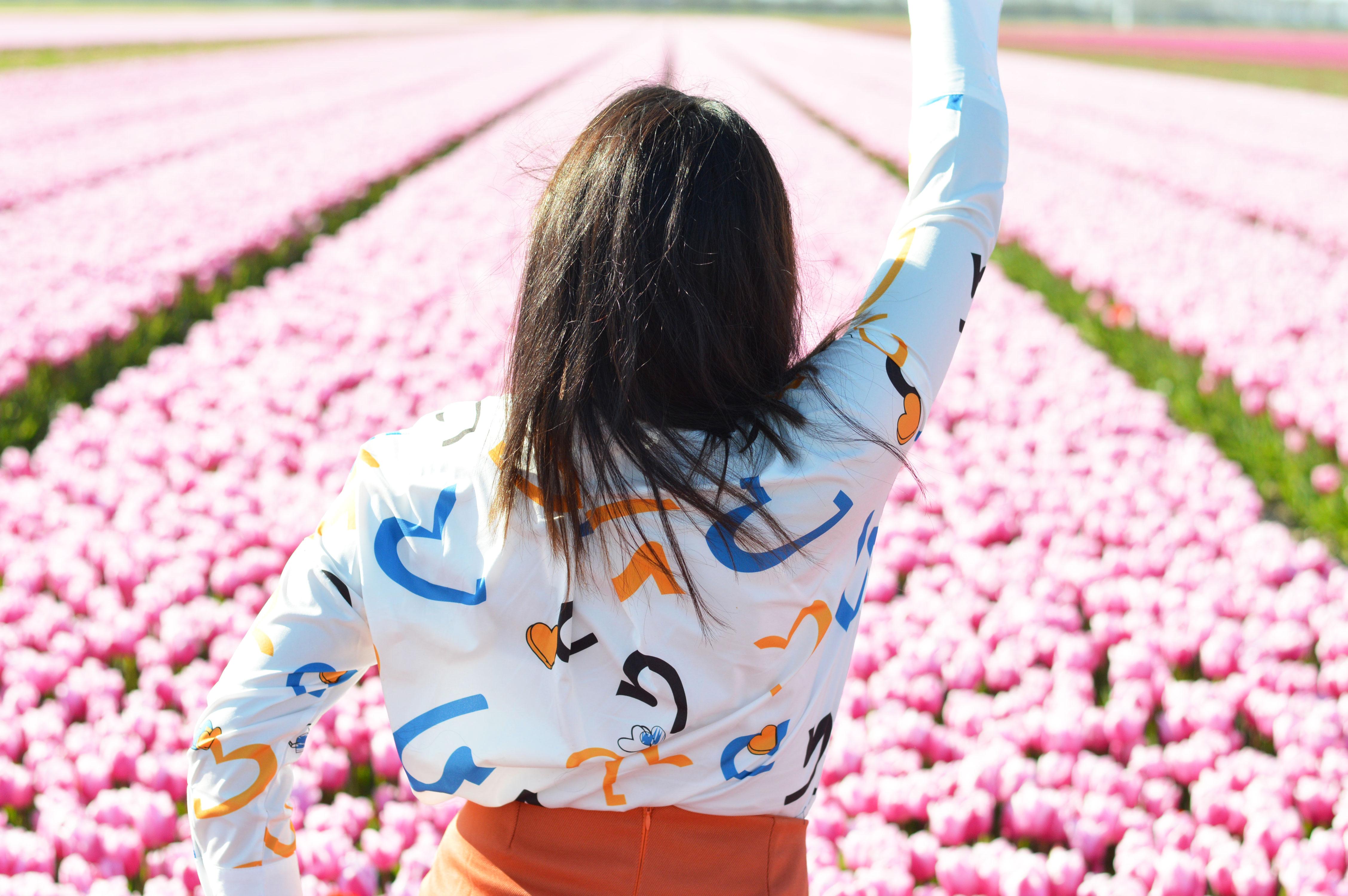 tulipsinholland4