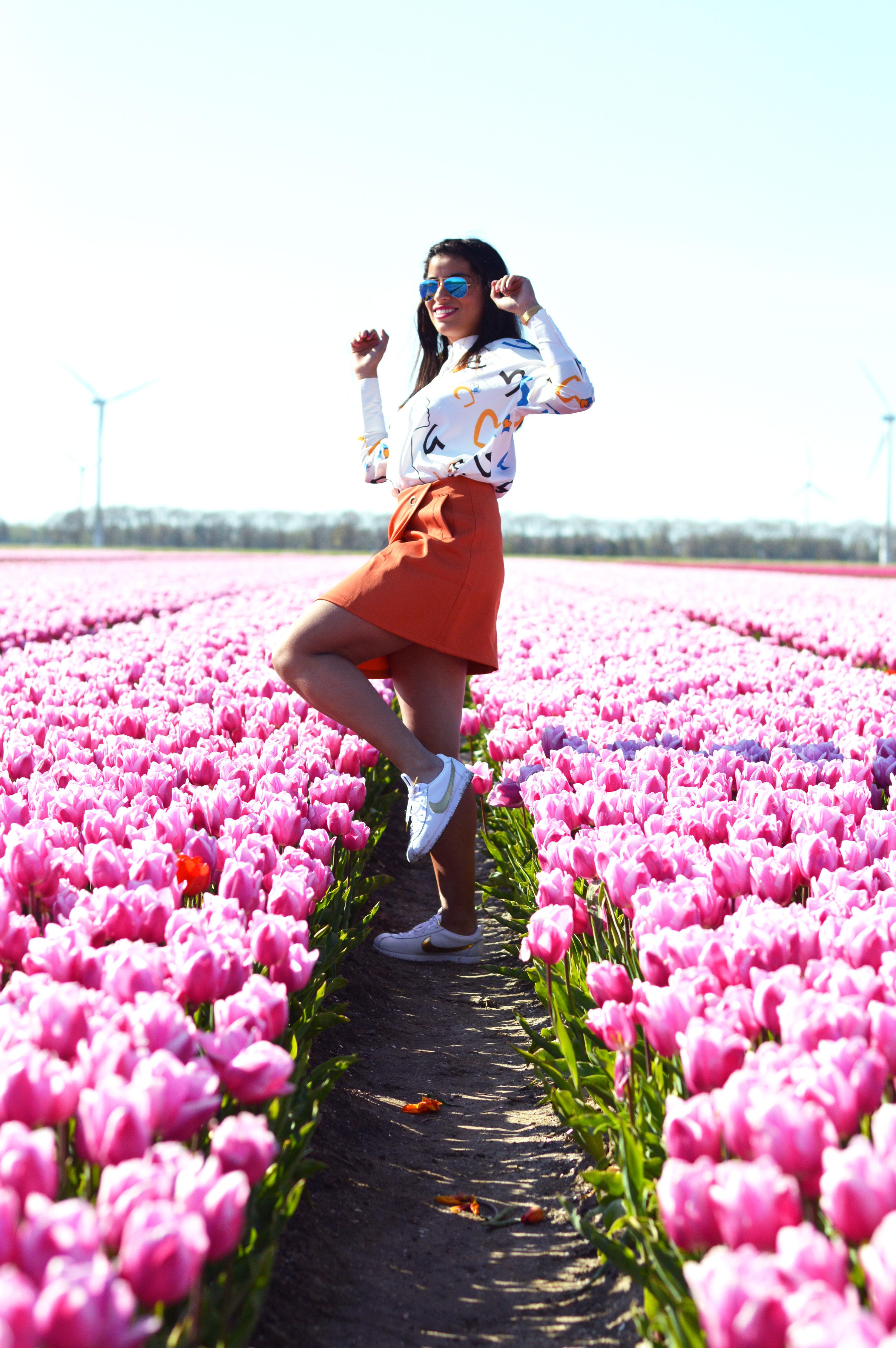 tulipsinholland5