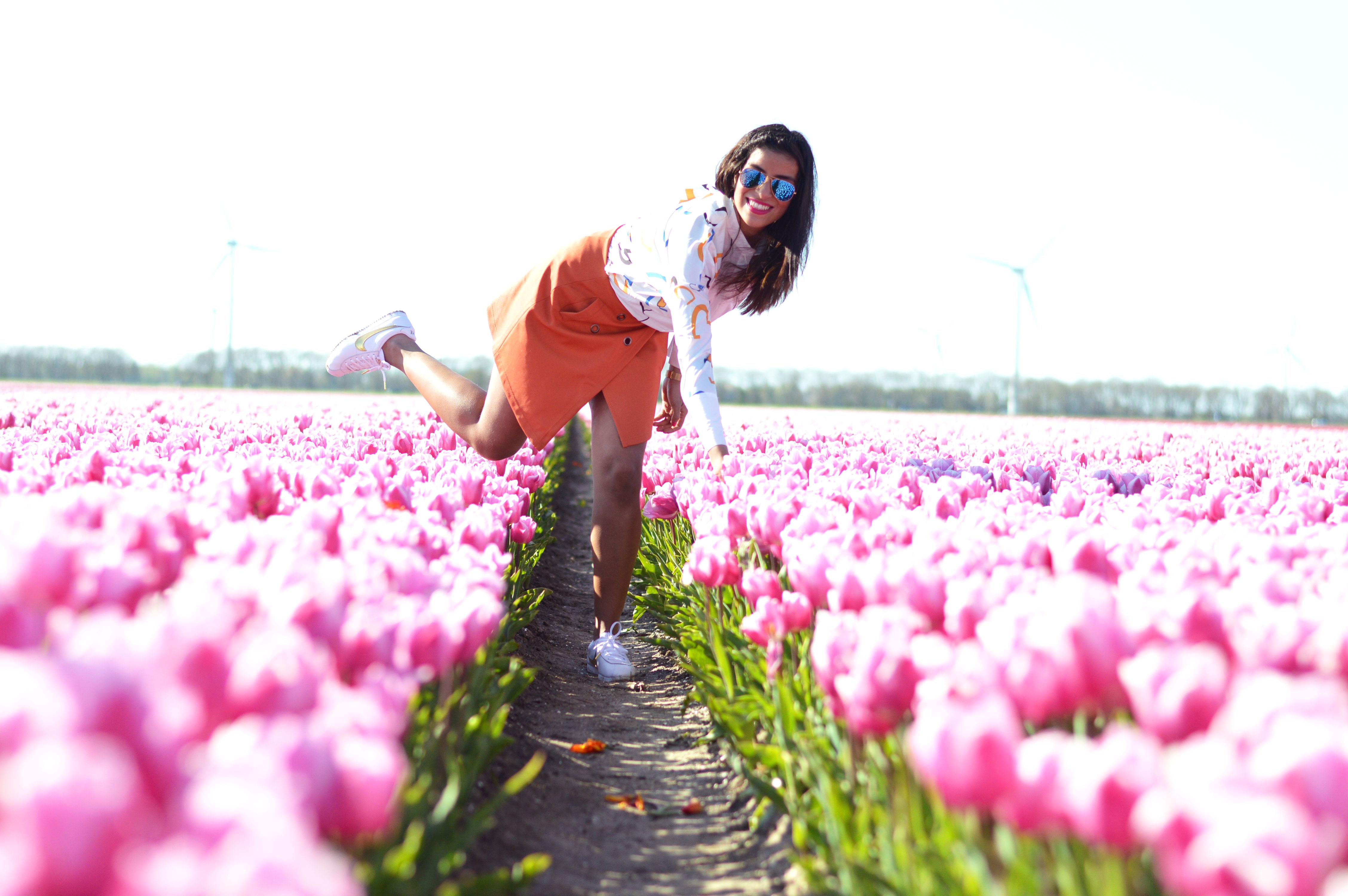tulipsinholland8